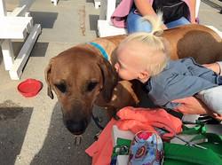 I love doggies so much I kiss them.