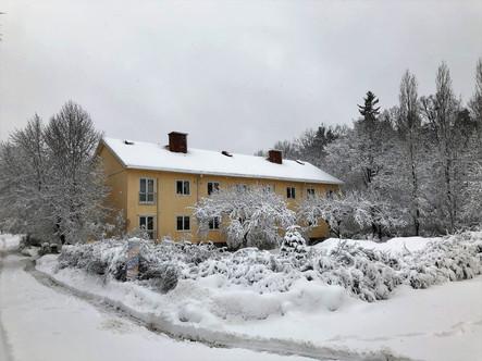 130_mirin.world_Stockholm_022019.jpg