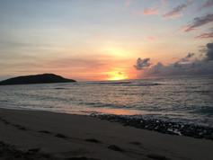 1078_mirin.world_Fiji.JPG
