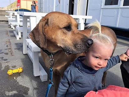 Doggie doggie doggie!!!!