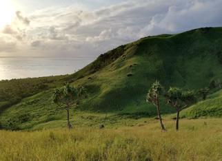 1069_mirin.world_Fiji.jpg