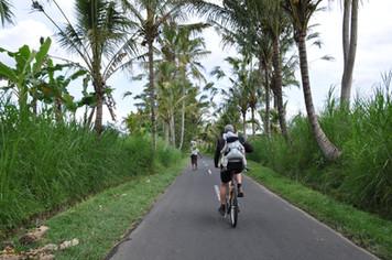 1488_mirin.world_Bali.JPG