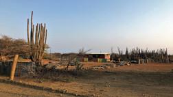184_mirin.world_Bonaire.JPG
