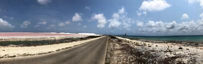 217_mirin.world_Bonaire.JPG