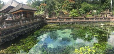 1610_mirin.world_Bali.JPG