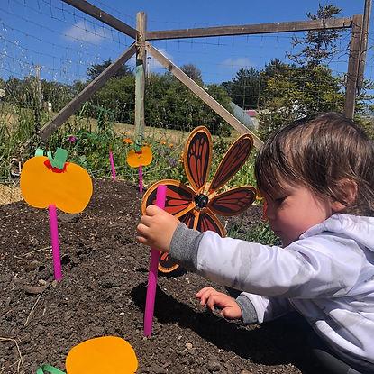 garden project.jpeg