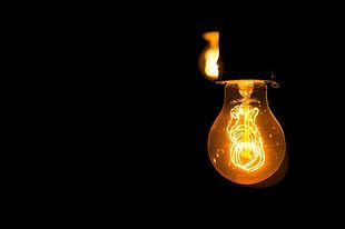 bulb_black.jpg