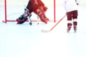 Roller Hockey-spillere