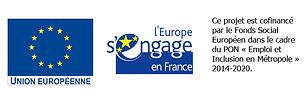 Bandeau Logos FSE 2016.jpg