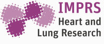 IMPRS Heart and Lung - Copy.jpeg