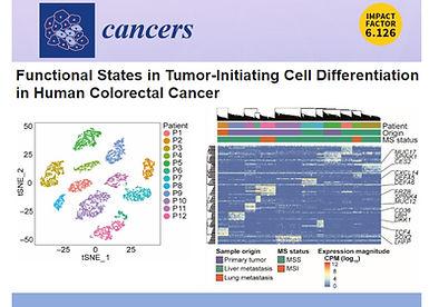 Lorenz' CANCERS paper.jpg