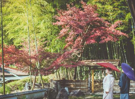 [Photoレポート]秋の前撮り🍁お受付けスタートです