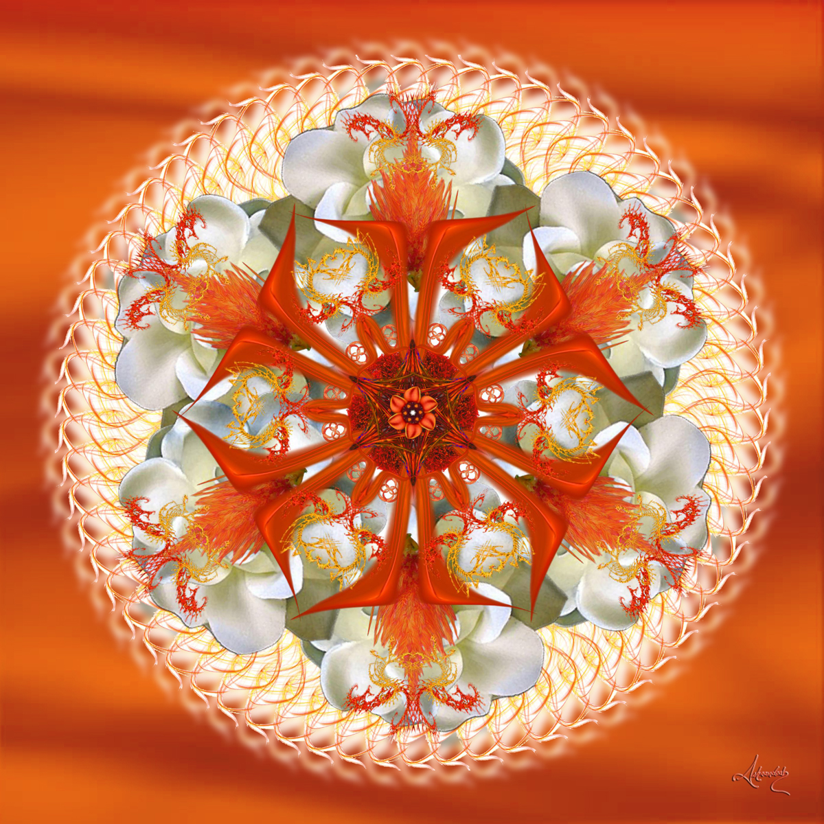 sacral chakra Activator