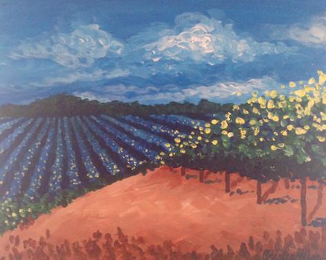 023 The Vineyard