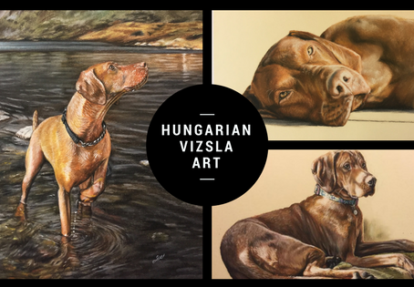 Updated: Portraits and paintings of 90 Hungarian Vizslas.