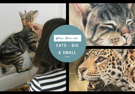Cats – Big and Small