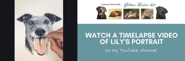 watch a timelapse of lily's portrait.png