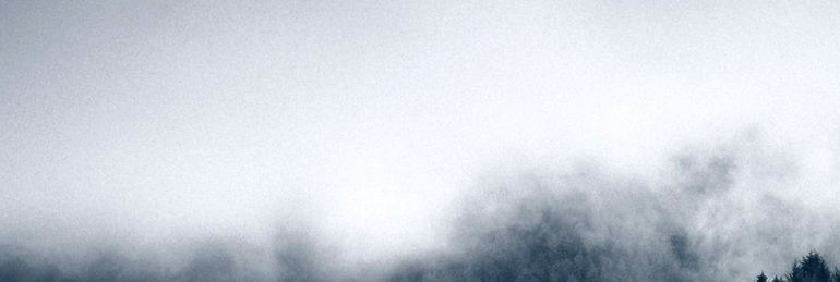 Fog%25252520and%25252520Nature_edited_ed
