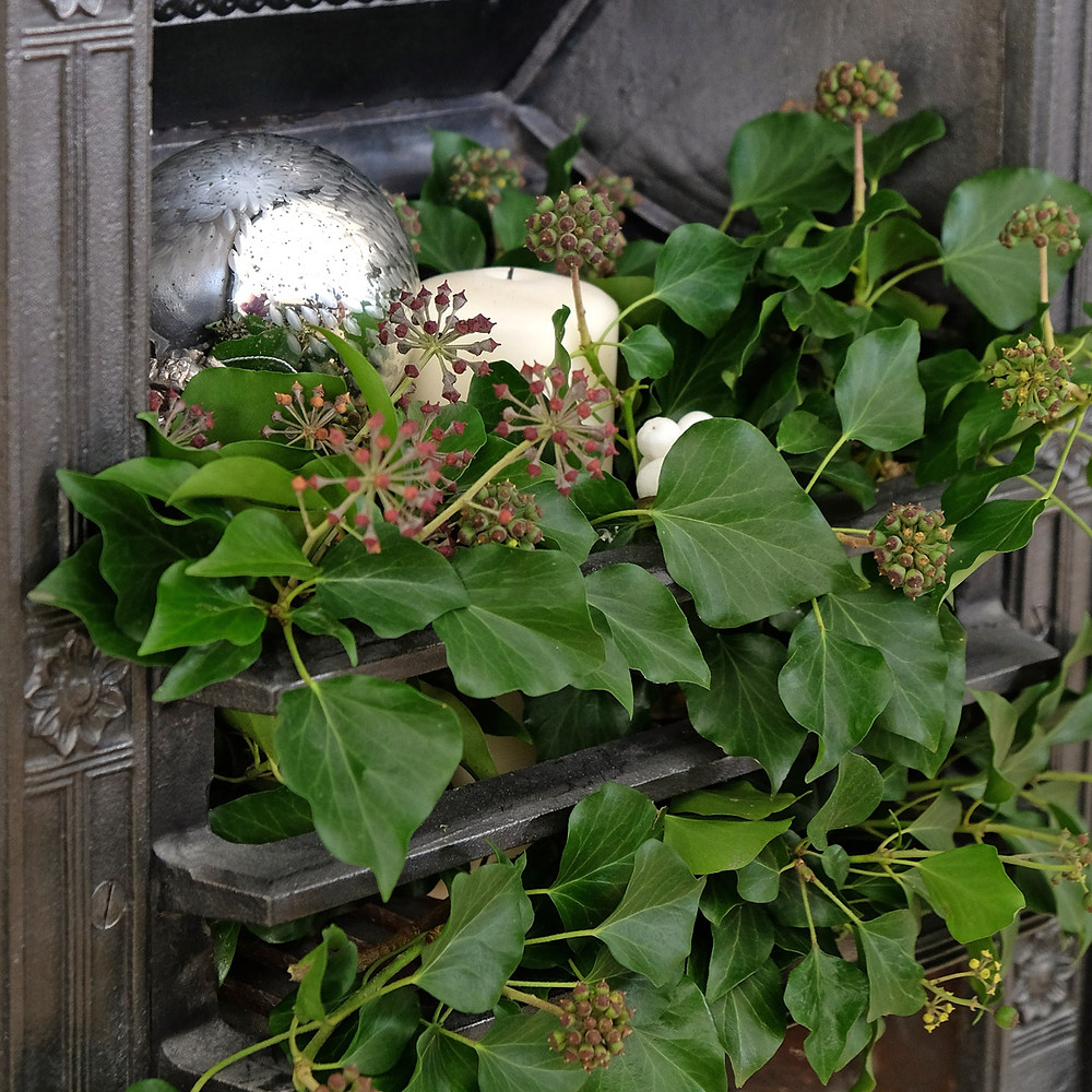 fire grate filled with ivy berries