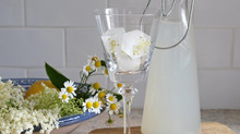 Elderflower cordial: hedgerow recipe #5