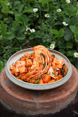 Recording & archiving  20 Authentic Kimchi Recipes