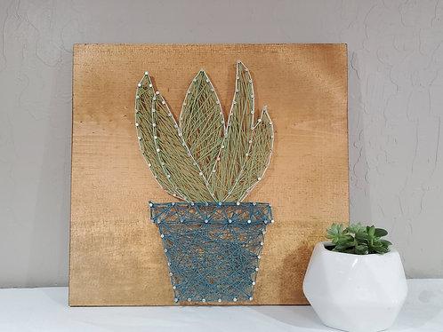 Leafy Succulent String Art Kit