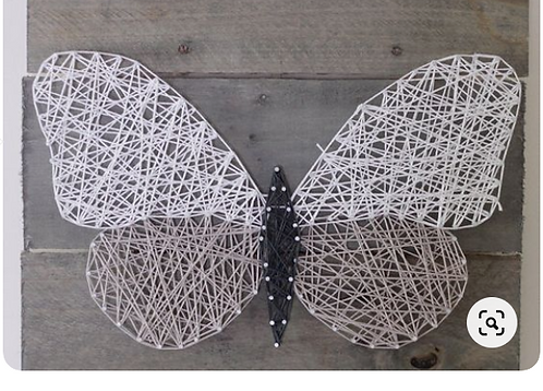 Moth String Art Kit