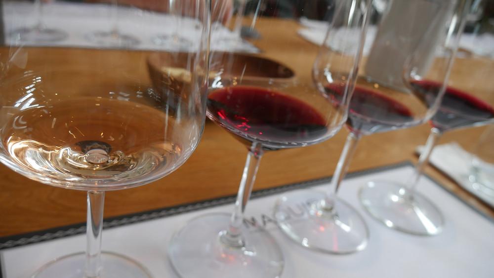 Wine Tasting di Chile (c) Arakita Rimbayana BuLiBi Bukan Liburan Biasa