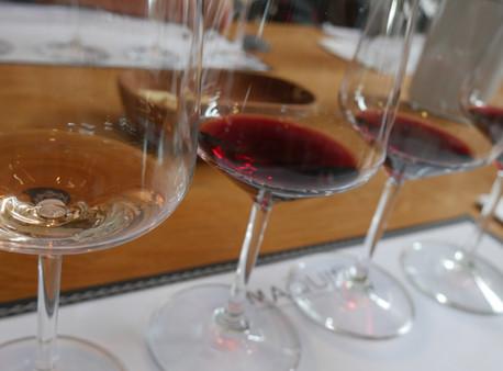 Wine Tasting Di Chile? Ini Panduan Lengkapnya