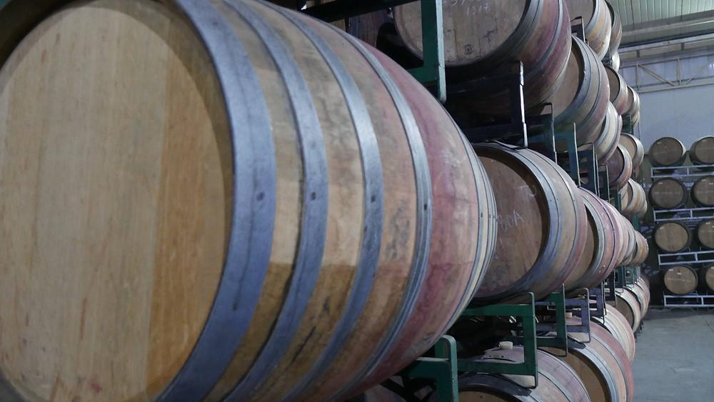 Proses fermentasi anggur menjadi minuman wine (c) Arakita Rimbayana BuLiBi Bukan Liburan Biasa