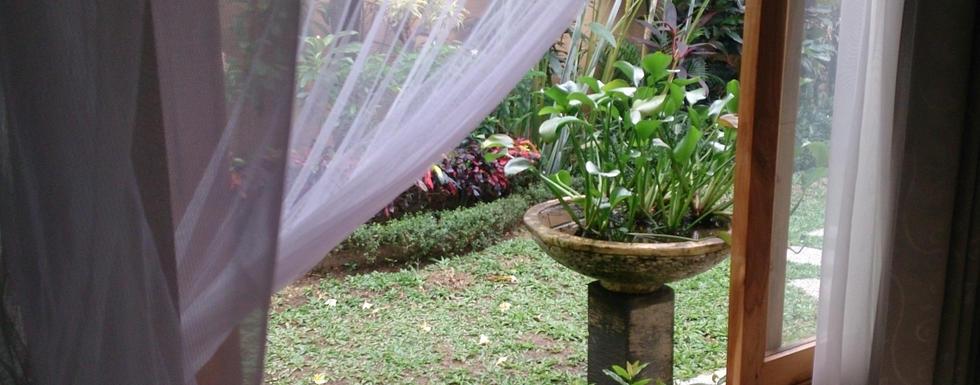 Hidden Piece Of Peace In Denpasar: The Joglo Guest House Bali