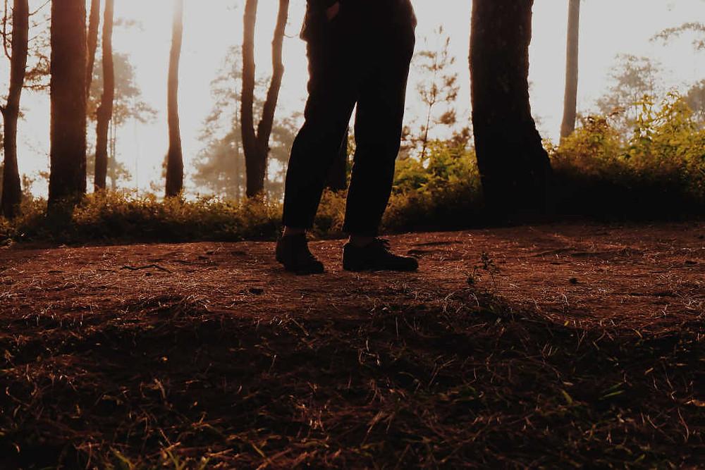 Hiking ke Gunung Lawu (Photo by Devi Puspita Amartha Yahya on Unsplash) BuLiBi Bukan Liburan Biasa