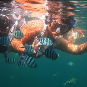 11 Fakta Unik Karimun Jawa yang Harus Traveler Tahu