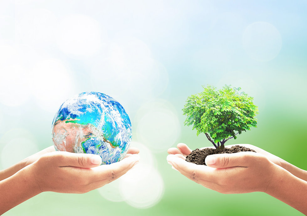 World environment day concept_ Two human hands holding earth globe and heart shape of tree