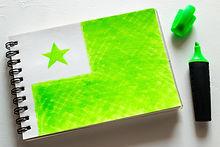 flag of esperanto in notebook on white b