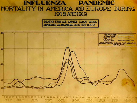 Lockdown Reflections Day 34: Lessons from the 1918 flu