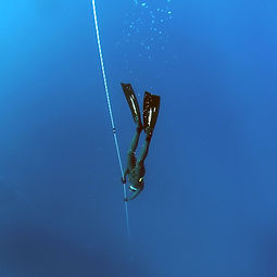 freediving-1383103.jpg