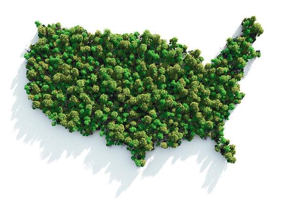 United States Green Initiative.jpg