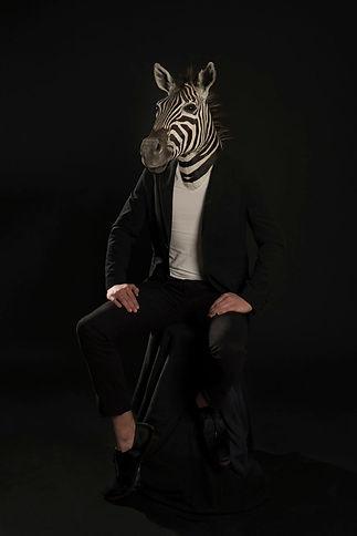Zebra-1110x1665.jpg