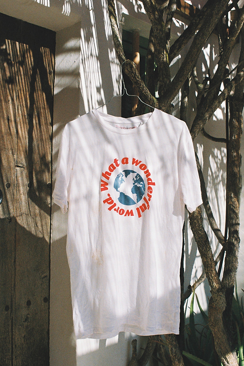 Camiseta Wonderful World