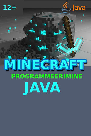 MinecraftNoored (29).jpg