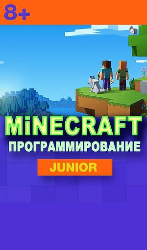 Minecraft (18).jpg