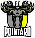 fc pointard.png