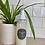 Thumbnail: Pest Solution Spray