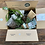 Thumbnail: Plant Lovers Gift Box ( 1 time purchase )