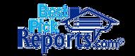 Best Picks Reports Logo.png