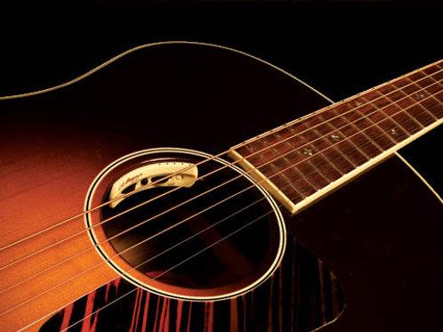 L.R. Baggs Anthem akoestische gitaar pickup en microfoon