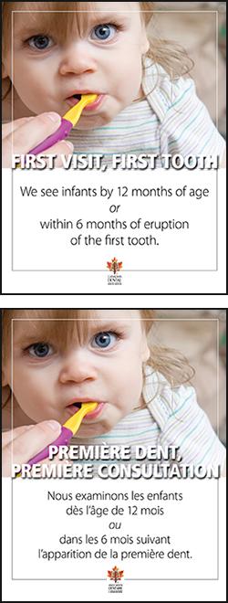 Oral health begins before birth