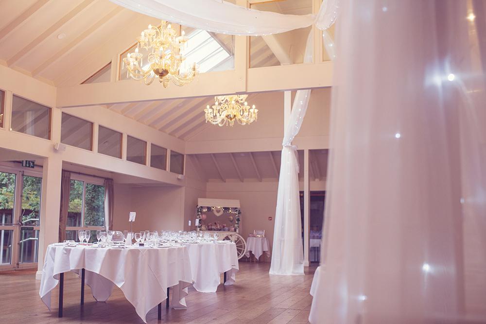 Wedding DJ Marwell Hotel