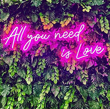 all you need is love wedding neon sign.j